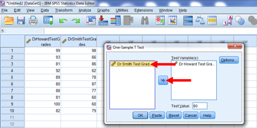 One-Sample T-Test in SPSS 8b